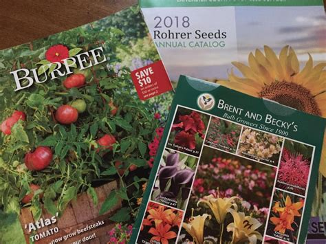 Garden Plants Catalogs by You Voted Here Are Your Favorite Seed And Garden Catalogs