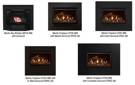 Mantis Gas Fireplace Reviews by Empire Mantis Fireplace Insert Surround Kit With Barrier