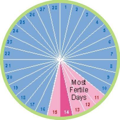 Calendar Method Calculator For Irregular 17 Best Ideas About Ovulation Signs On