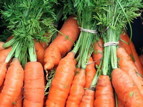 carote come cucinarle come cucinare le carote ricetta