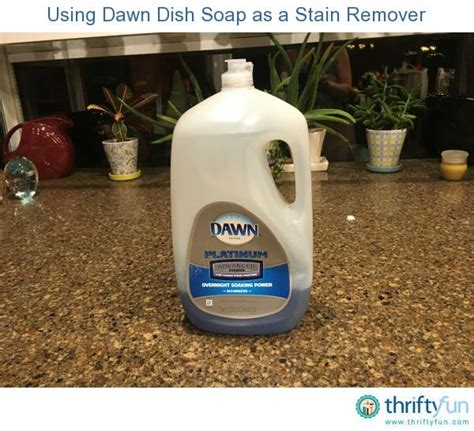 can you use laundry detergent in a rug doctor 51 best images about so many uses on stains uses for baking soda and mr clean