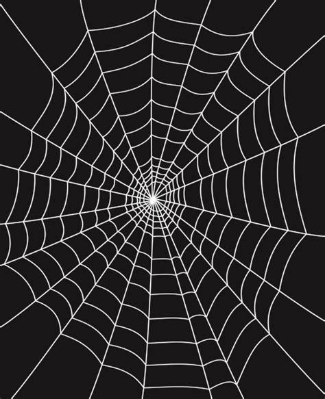 web pattern online set of spider web vector background 02 vector background