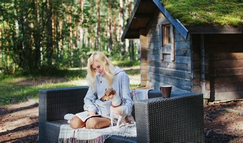 dog friendly holiday houses 47 dog friendly holiday homes in the usa dog couture country