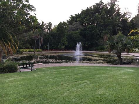 City Botanic Gardens City Botanic Gardens 10 Interesting Facts About Brisbane City Botanic Gardens City Botanic