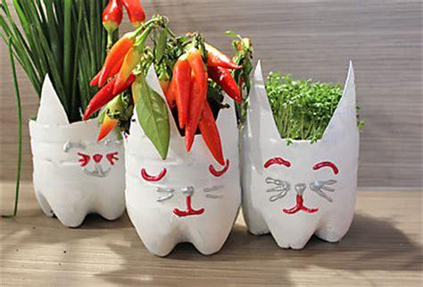 Basteln Mit Leeren Plastikflaschen 3482 by Blument 246 Pfe Aus Plastikflaschen Dm Shop Magazin