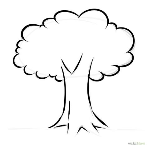 simple tree drawing pictures of trees without leaves clipart best