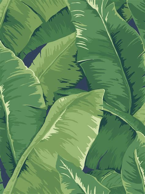 banana leaf template banana leaf wallpaper archives jaima company