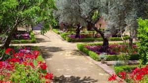 Cheap Holidays In Jerez De La » Ideas Home Design