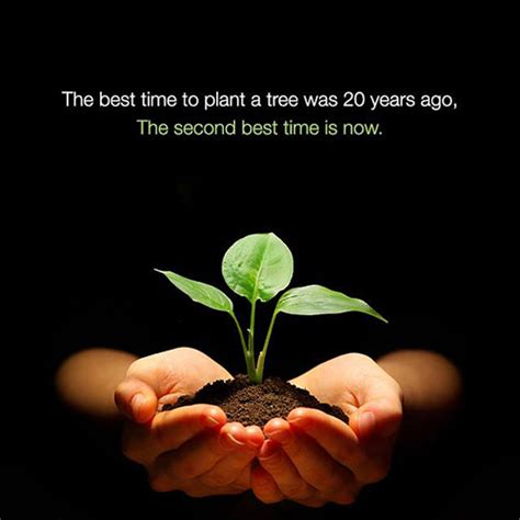 Save Our Planet save our planet 26 the best time to plant a tree was 20
