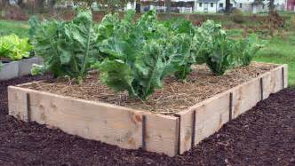 raised bed ideas 10 easy raised bed garden ideas to about for