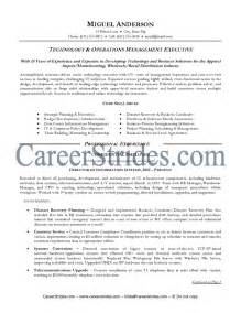 Sample Resume Objectives Information Technology by Information Technology Resume Examples Getessay Biz