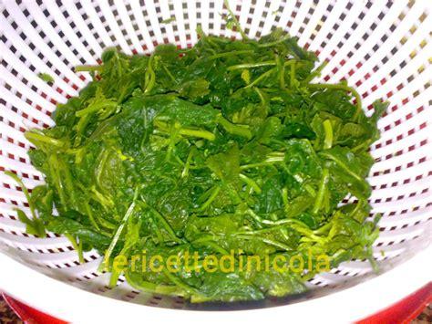 cucinare la verdura frittate con verdure le ricette di nicola