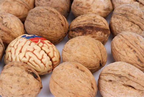 quali alimenti contengono lo zinco 10 cibi che migliorano la salute cervello