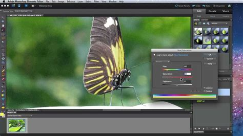 adobe photoshop quick tutorial photoshop elements 10 tutorial magic wand and quick