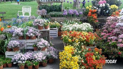 giardini margherita bologna eventi quot giardini e terrazzi quot dal 12 al 14 maggio ai giardini