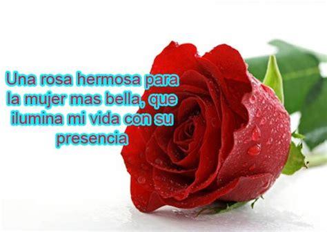 imagenes de amor para la mujer mas bella imagenes y frases facebook para la mujer mas bella