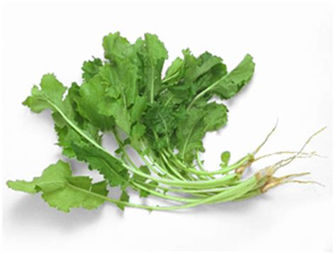 gren keaf produce types nature and nutrition health benefits of fruits and vegetables health benefits of