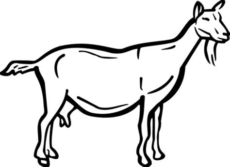 goat face coloring page free coloring pages of goat head mask