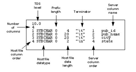 format file for bcp in sybase format files