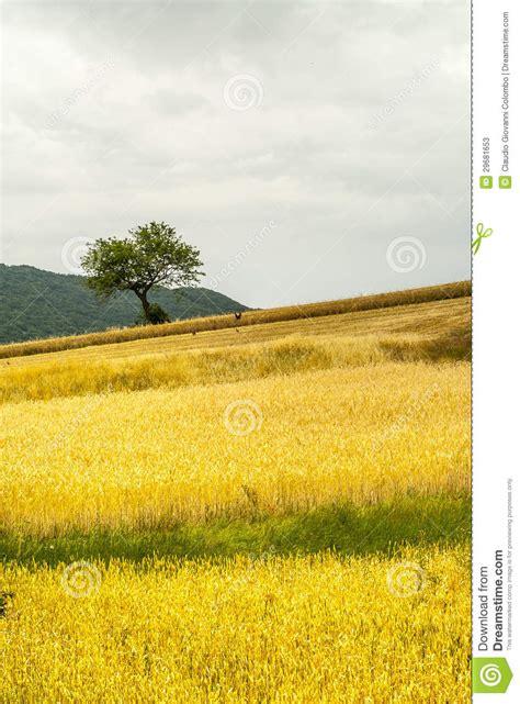 sella accedi sella di corno abruzzi paesaggio immagine stock