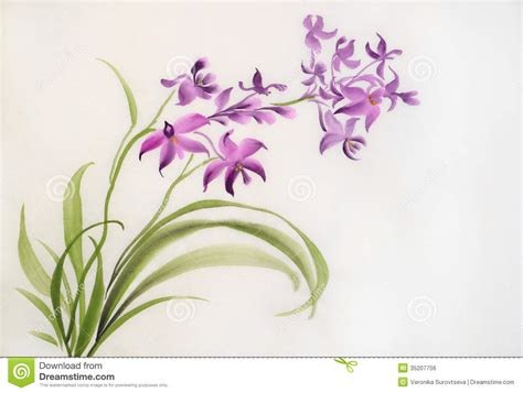 wild purple orchids royalty free stock image image 35207756