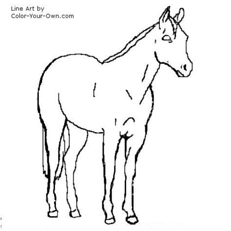 coloring pages of quarter horses ranch horses how stock your for sale colorado year old