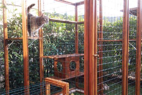 gabbie per gatti da esterno recinto giardino gatto gattino sul recinto come