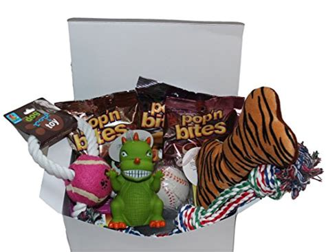puppy care package care package new pet gift box animals supplies supplies supplies toys