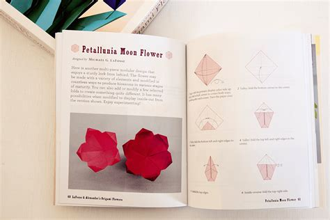 Origami Flower Book - origami flowers by lafosse book review