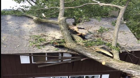 tree falls on house insurance tree falls on house trapping winona woman under roof 171 wcco cbs minnesota