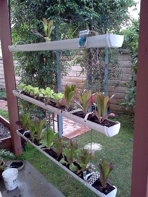 62 best images about aquaponics on gardens