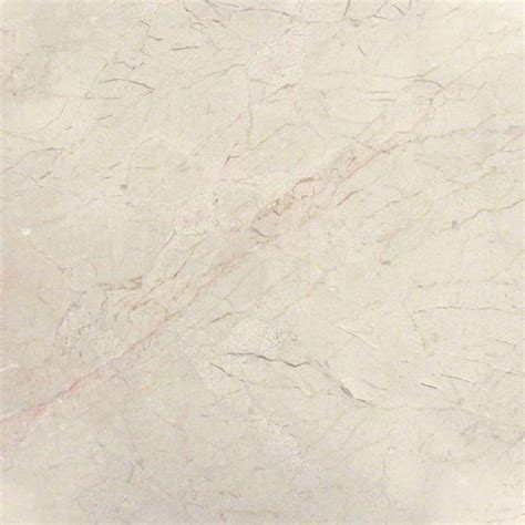 ms international marble 12 x 12 honed crema marfil classic