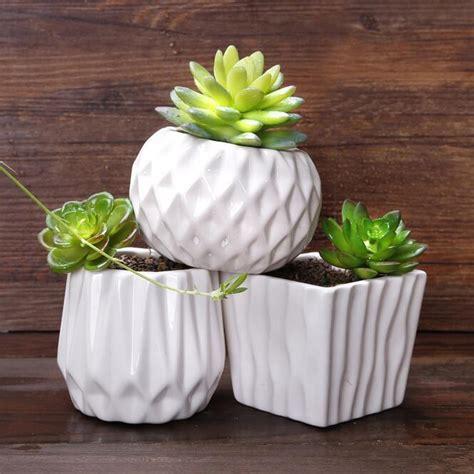 succulent pots online buy wholesale succulents pots from china succulents