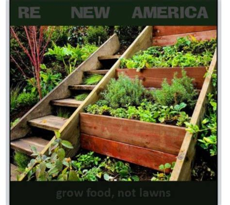 vegetable boxes for the garden hillside garden with wooden planter boxes and vegetables