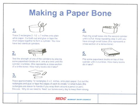 How To Make A Paper Bone - wikisota southern agriculture dairy a paper bone