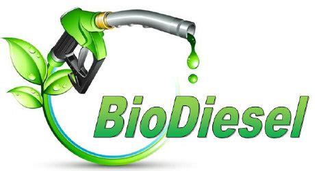 backyard biodiesel biodiesel