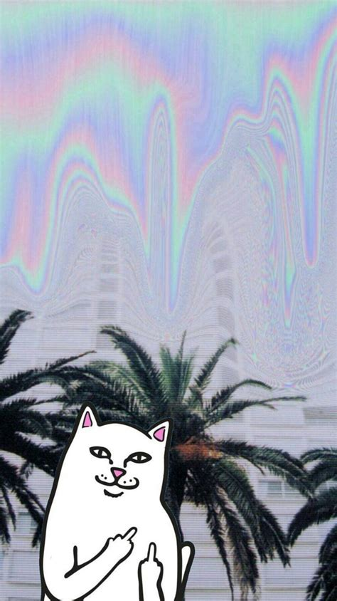 aesthetic wallpaper for iphone 32 best ripndip images on pinterest iphone backgrounds
