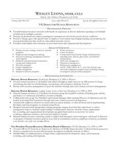 Professional Format Resume Examples Of Resumes Sample Resume Profile Statement