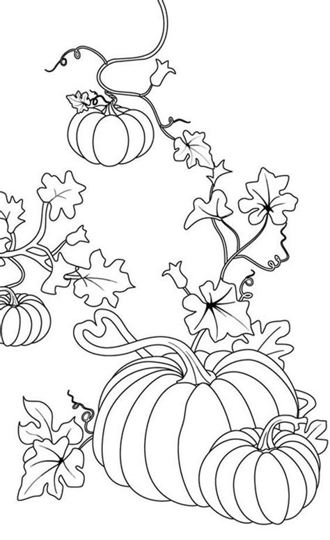Pumpkin Patch Coloring Pages Printable Az Coloring Pages Pumpkin Patch Coloring Pages