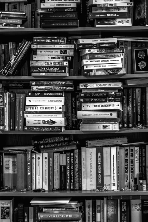 Free picture: research, school, shelf, study, bookcase