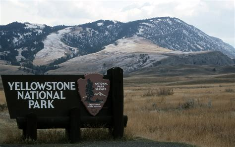 yellowstone national park travel trip journey yellowstone national park usa