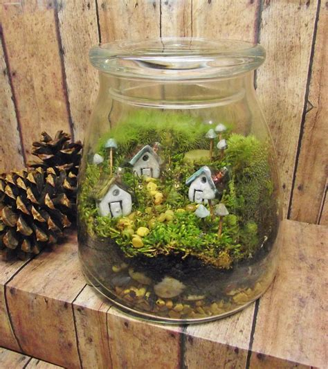 fairy terrarium large miniature landscape live moss terrarium