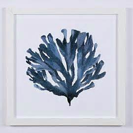 framed blue coral prints