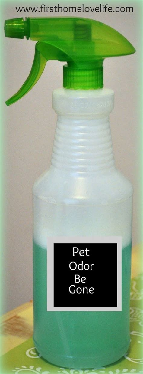 home made upholstery cleaner 1000 ideas about upholstery cleaner on pinterest