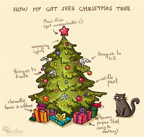 how dita sees xmas tree catsu the cat