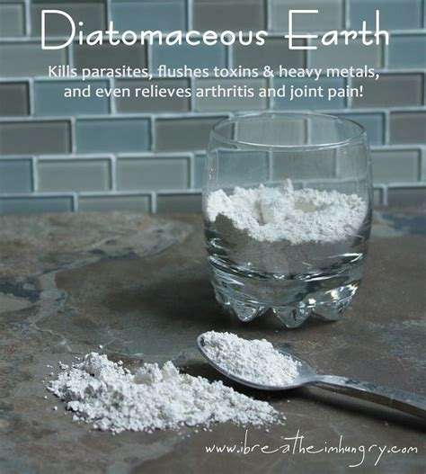 Diatomaceous Earth Candida Detox by Diatomaceous Earth Benefits Fitness