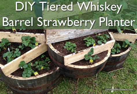 Tiered Strawberry Planter Plans by Tiered Whiskey Barrel Strawberry Planter Diy