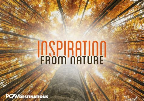 design inspiration in nature destination design firm publishes inspiration from nature