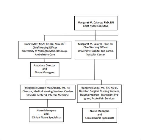 hospital organizational chart hospital organizational chart 10 documents in