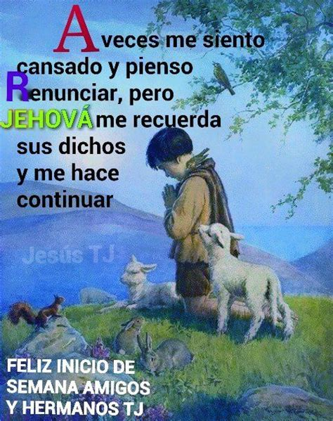 imagenes biblicas jw org 0b2121d1fe78046f5af34a9da9099135 jpg 480 215 607 p 237 xeles jw